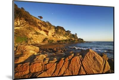 Coast Landscape at Bunker Bay-Frank Krahmer-Mounted Photographic Print