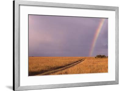 Rainbow on the Savanna-DLILLC-Framed Photographic Print