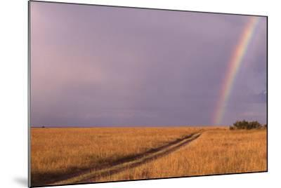 Rainbow on the Savanna-DLILLC-Mounted Photographic Print