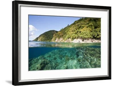 Coast of Dominica above and below Water-Reinhard Dirscherl-Framed Photographic Print