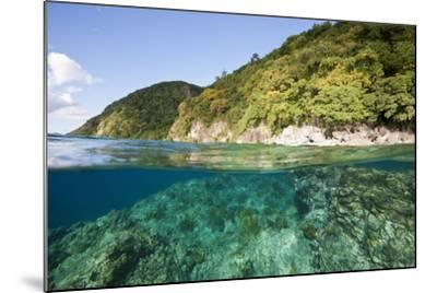 Coast of Dominica above and below Water-Reinhard Dirscherl-Mounted Photographic Print