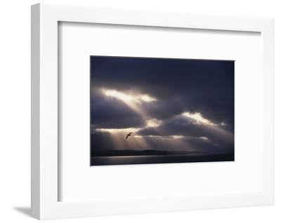Sunbeams and Clouds over Water-DLILLC-Framed Photographic Print