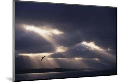 Sunbeams and Clouds over Water-DLILLC-Mounted Photographic Print