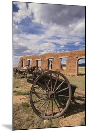 Dilapidated Wagon-DLILLC-Mounted Photographic Print