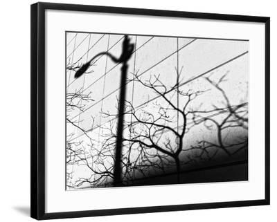 Shadow Post-Dean Forbes-Framed Photographic Print