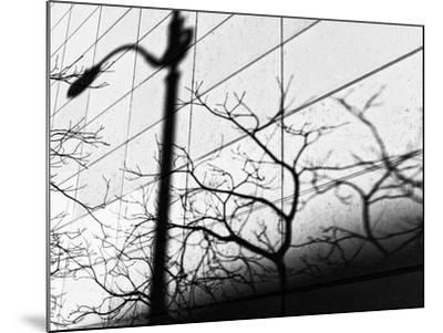 Shadow Post-Dean Forbes-Mounted Photographic Print
