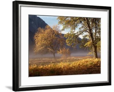 Yosemite Valley in Fall Foliage-Craig Lovell-Framed Photographic Print