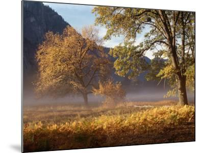 Yosemite Valley in Fall Foliage-Craig Lovell-Mounted Photographic Print