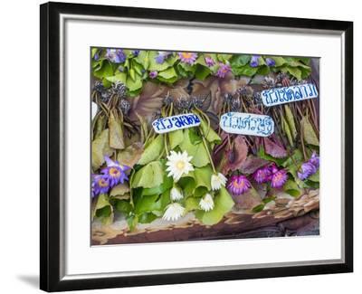 Damnoen Saduak Floating Market-Terry Eggers-Framed Photographic Print
