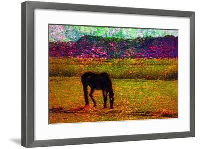 Horse--Framed Photographic Print