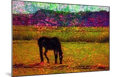 Horse--Mounted Photographic Print