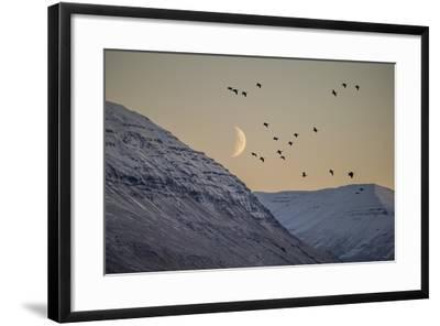 Moonlight over Snow Covered Mountain-Arctic-Images-Framed Photographic Print