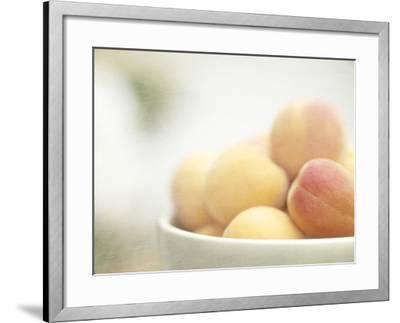 Apricots in a White Bowl Still Life-Steve Lupton-Framed Photographic Print