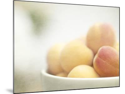 Apricots in a White Bowl Still Life-Steve Lupton-Mounted Photographic Print