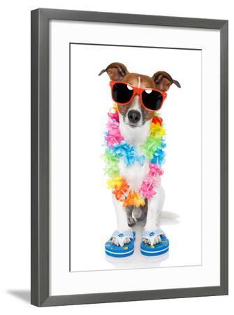 Tourist Dog With Hawaiian Lei And Shades-Javier Brosch-Framed Photographic Print