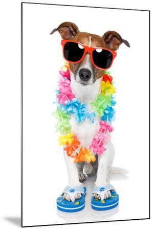 Tourist Dog With Hawaiian Lei And Shades-Javier Brosch-Mounted Photographic Print