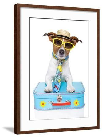 Tourist Dog With A Hat , Sunglasses And A Bag-Javier Brosch-Framed Photographic Print