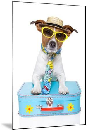 Tourist Dog With A Hat , Sunglasses And A Bag-Javier Brosch-Mounted Photographic Print