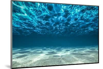 Ocean Bottom, View Beneath Surface-Cico-Mounted Photographic Print