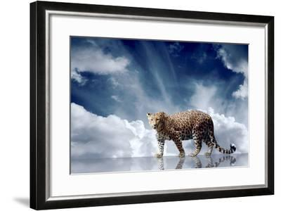 Predator Stay On The Sky Background-yuran-78-Framed Photographic Print