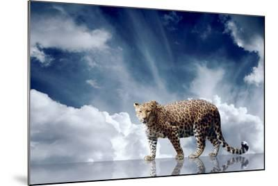 Predator Stay On The Sky Background-yuran-78-Mounted Photographic Print