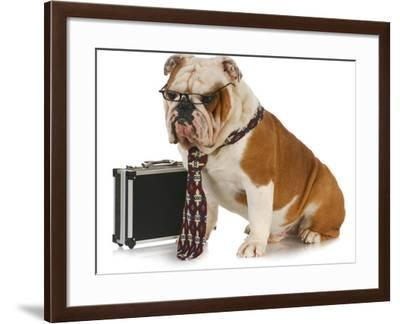 Business Dog - English Bulldog Male Wearing Tie And Glasses Sitting Beside Briefcase-Willee Cole-Framed Photographic Print