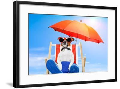Dog Listen To Music With A Music Player-Javier Brosch-Framed Photographic Print