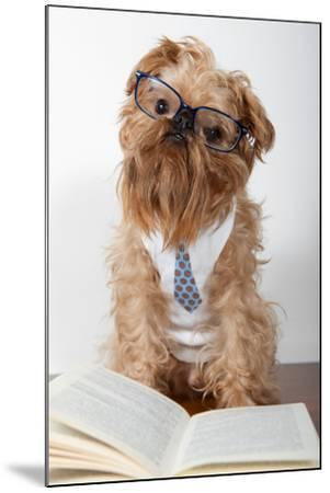 Serious Dog In Glasses-Okssi-Mounted Photographic Print