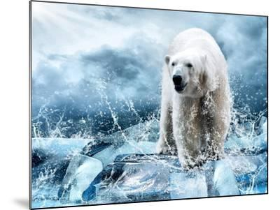 White Polar Bear Hunter On The Ice In Water Drops-yuran-78-Mounted Photographic Print