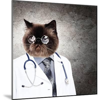 Funny Fluffy Cat Doctor In A Robe And Glasses. Collage-Sergey Nivens-Mounted Photographic Print