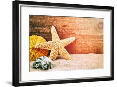 Sea Star and Shells-paulgrecaud-Framed Photographic Print