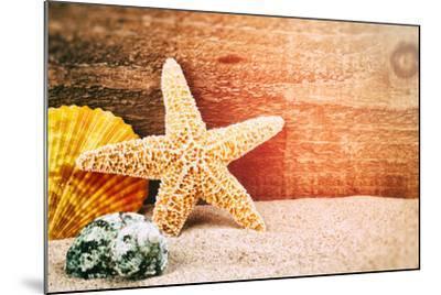 Sea Star and Shells-paulgrecaud-Mounted Photographic Print