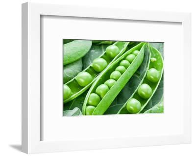 Pods of Green Peas on a Background of Leaves-Volff-Framed Photographic Print