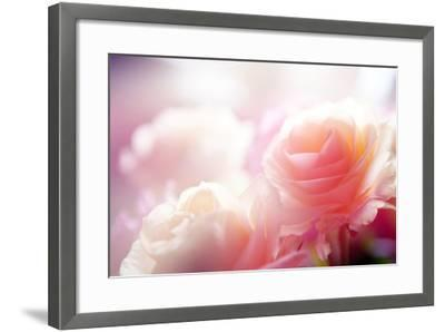 Beautiful Flowers Made with Color Filters-Timofeeva Maria-Framed Photographic Print