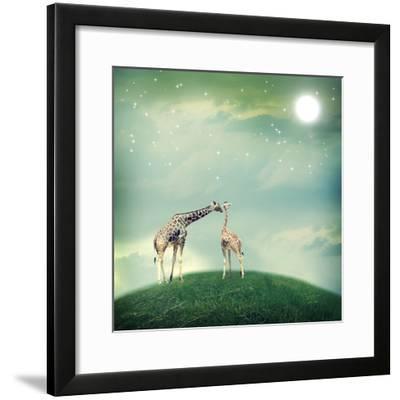 Giraffes In Friendship Or Love Concept Image-Melpomene-Framed Photographic Print