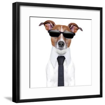 Cool Doggy-Javier Brosch-Framed Photographic Print