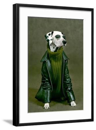 Dalmatian-ingret-Framed Photographic Print