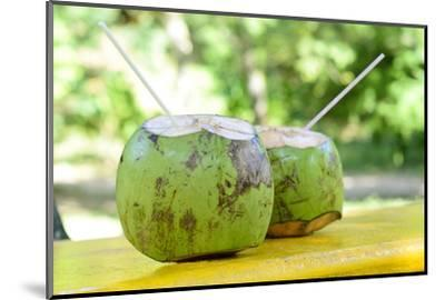 Fresh Coconut-Paul_Brighton-Mounted Photographic Print