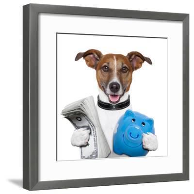 Money Dog-Javier Brosch-Framed Photographic Print