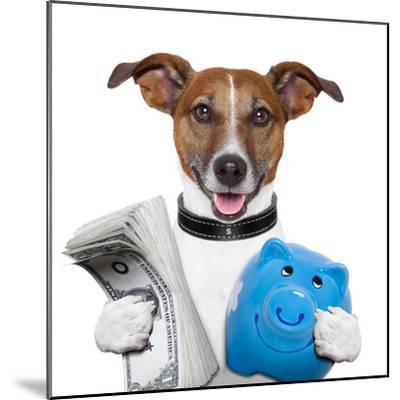 Money Dog-Javier Brosch-Mounted Photographic Print