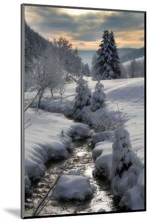 Winter-Hasenonkel-Mounted Photographic Print