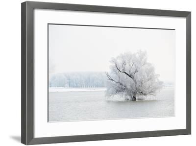 Winter Landscape-geanina bechea-Framed Photographic Print