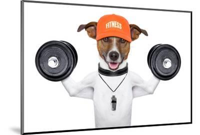 Fitness Dog-Javier Brosch-Mounted Photographic Print