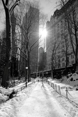 Winter Snow in Central Park, New York City-Zigi-Framed Photographic Print