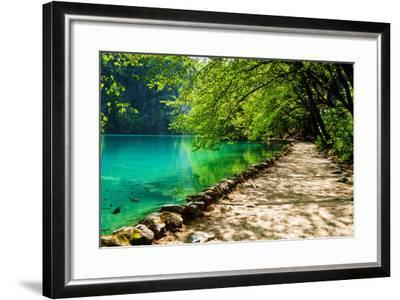 Path near A Forest Lake with Fish in Plitvice Lakes National Park, Croatia-Lamarinx-Framed Photographic Print
