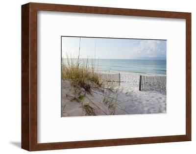 Beautiful Beach at Sunrise-forestpath-Framed Photographic Print