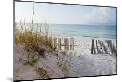 Beautiful Beach at Sunrise-forestpath-Mounted Photographic Print