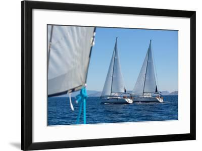 Sailing Ship Yachts with White Sails in a Row.-De Visu-Framed Photographic Print