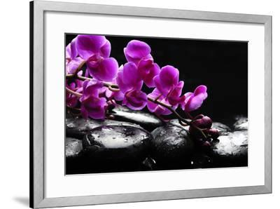 Zen Stone and Pink Orchid with Reflection-crystalfoto-Framed Photographic Print