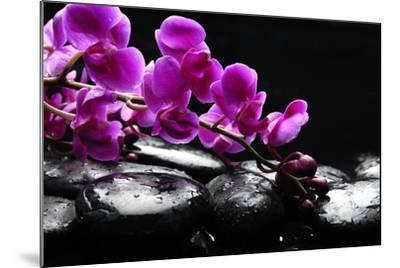 Zen Stone and Pink Orchid with Reflection-crystalfoto-Mounted Photographic Print